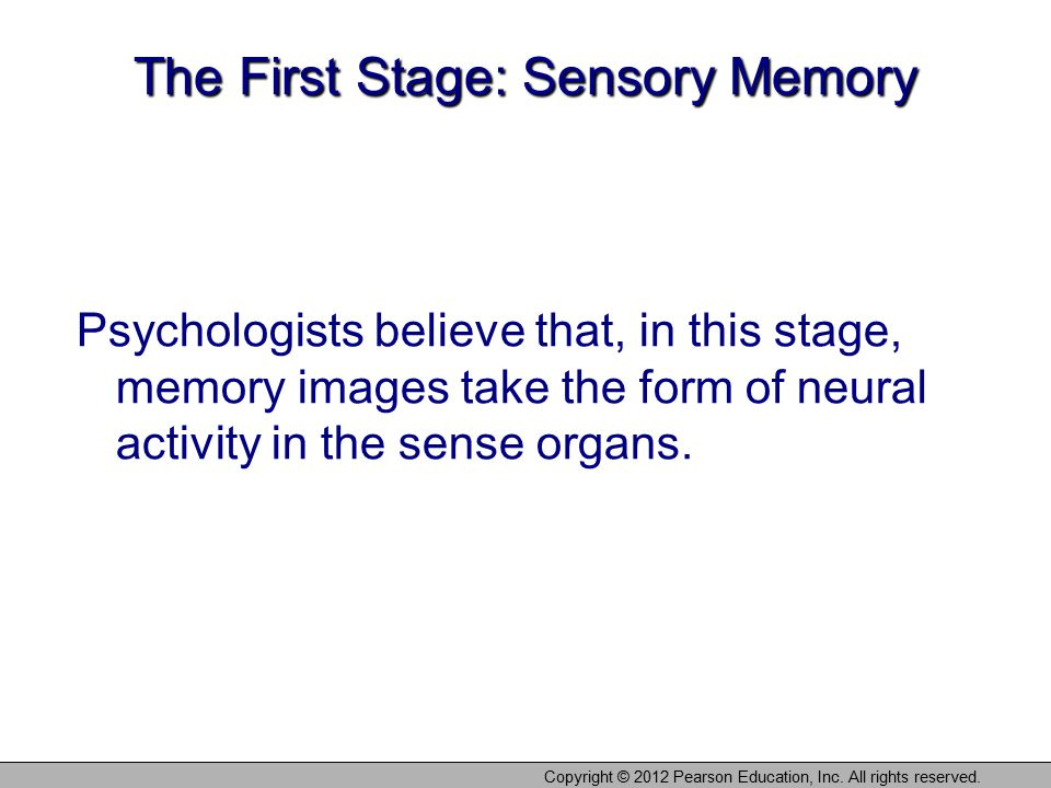 The First Stage: Sensory Memory