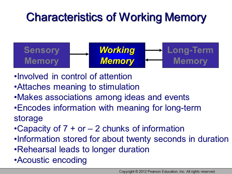 Characteristics of Working Memory