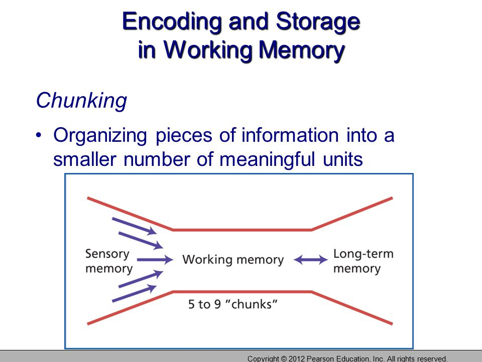 Encoding and Storage in Working Memory