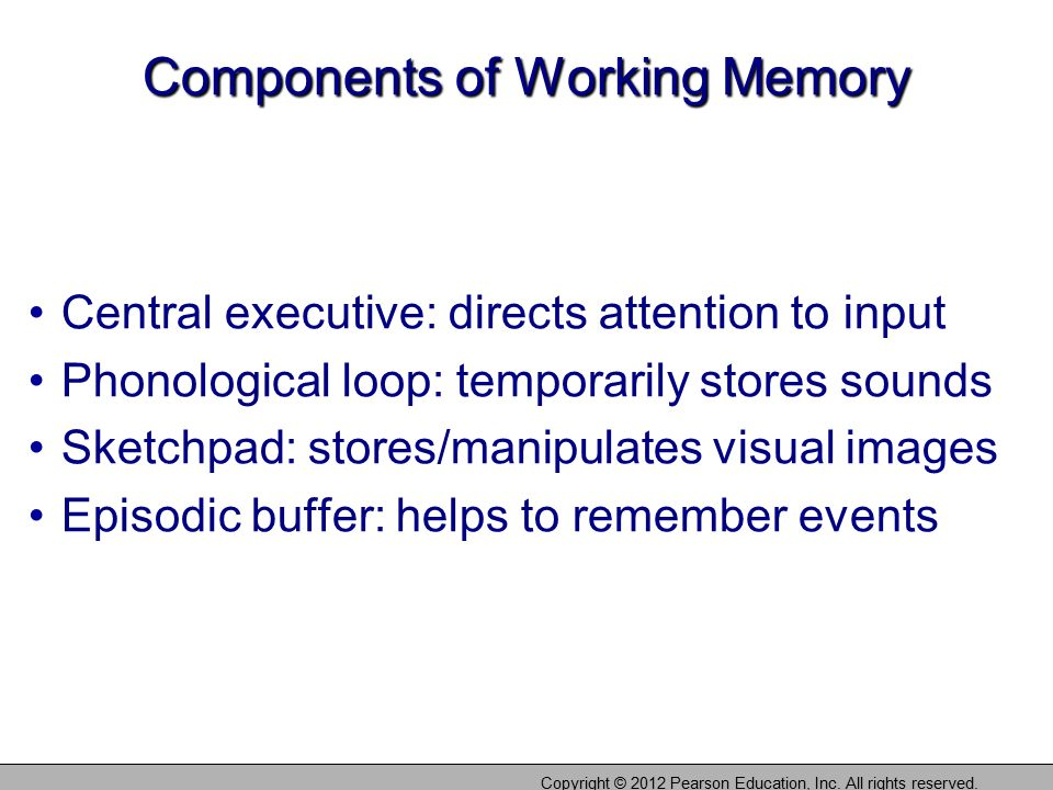 Components of Working Memory