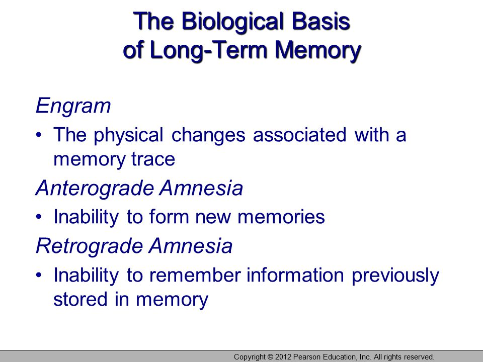 The Biological Basis of Long-Term Memory