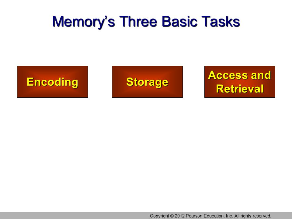 Memory's Three Basic Tasks