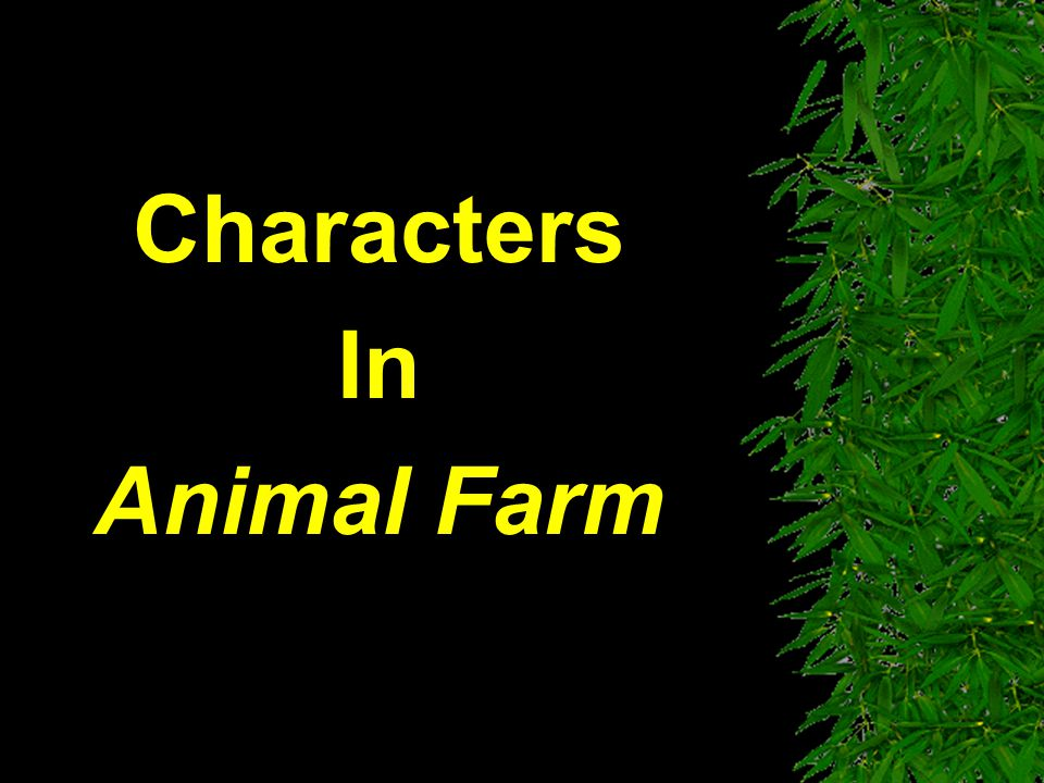 Characters In Animal Farm