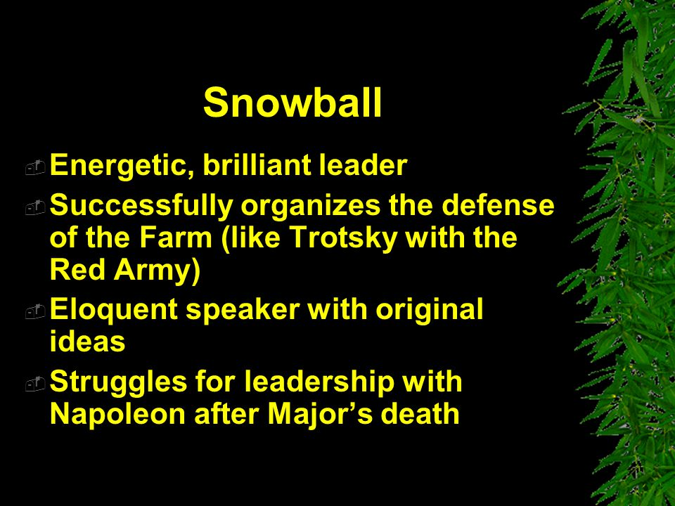 Snowball Energetic, brilliant leader