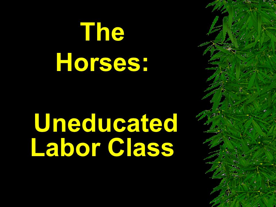 The Horses: Uneducated Labor Class