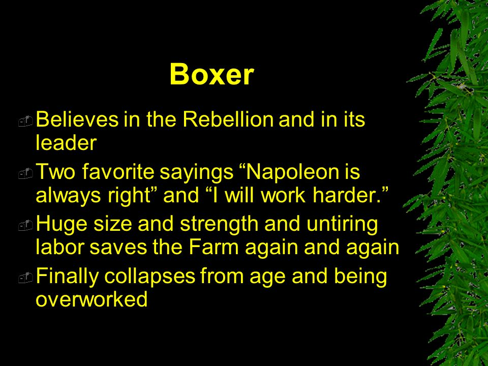 Boxer Believes in the Rebellion and in its leader