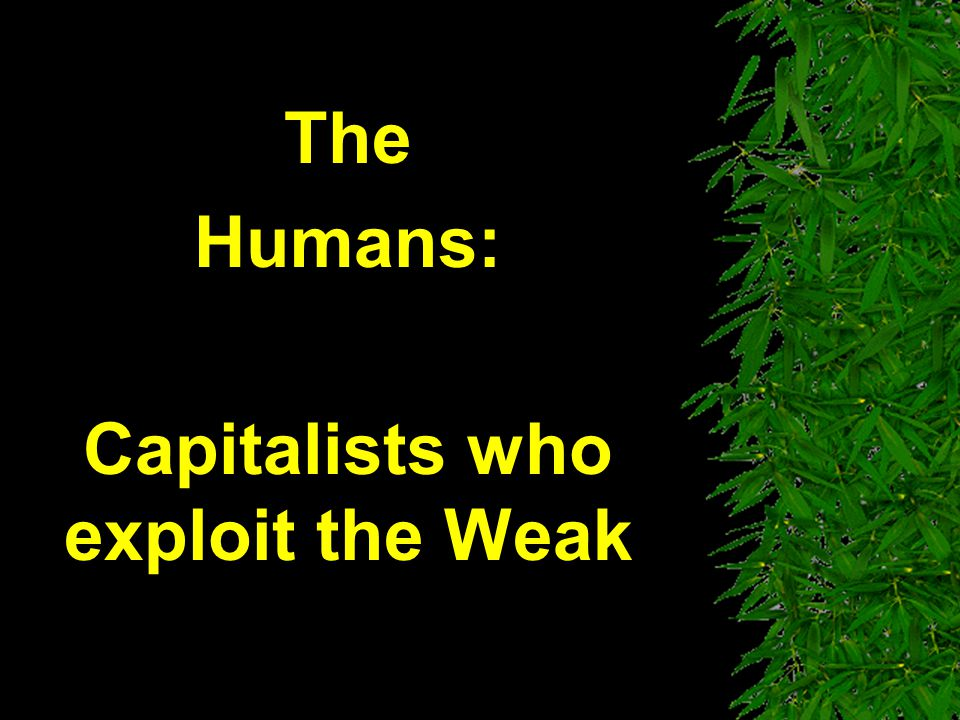 The Humans: Capitalists who exploit the Weak