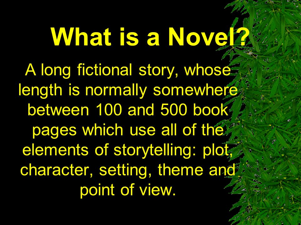What is a Novel