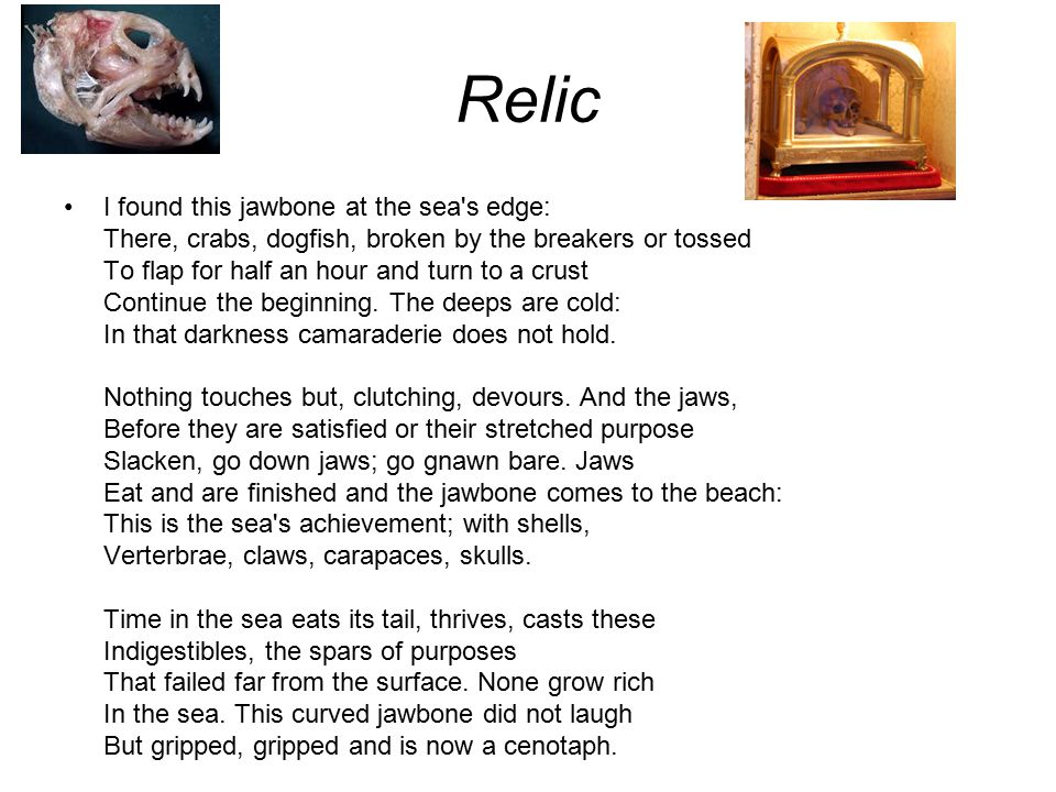 relic by ted hughes 'wodwo' - the poem by ted hughes, from the edited h2g2, the unconventional guide to life, the universe and everything.