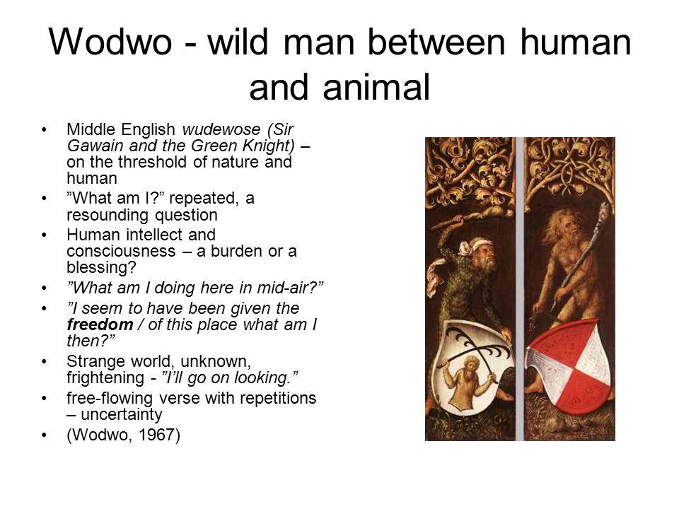 Wodwo - wild man between human and animal