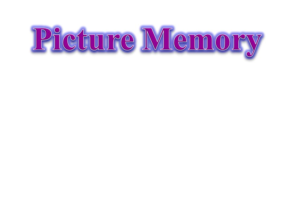 Picture Memory
