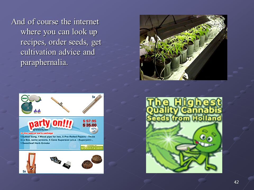 And of course the internet where you can look up recipes, order seeds, get cultivation advice and paraphernalia.