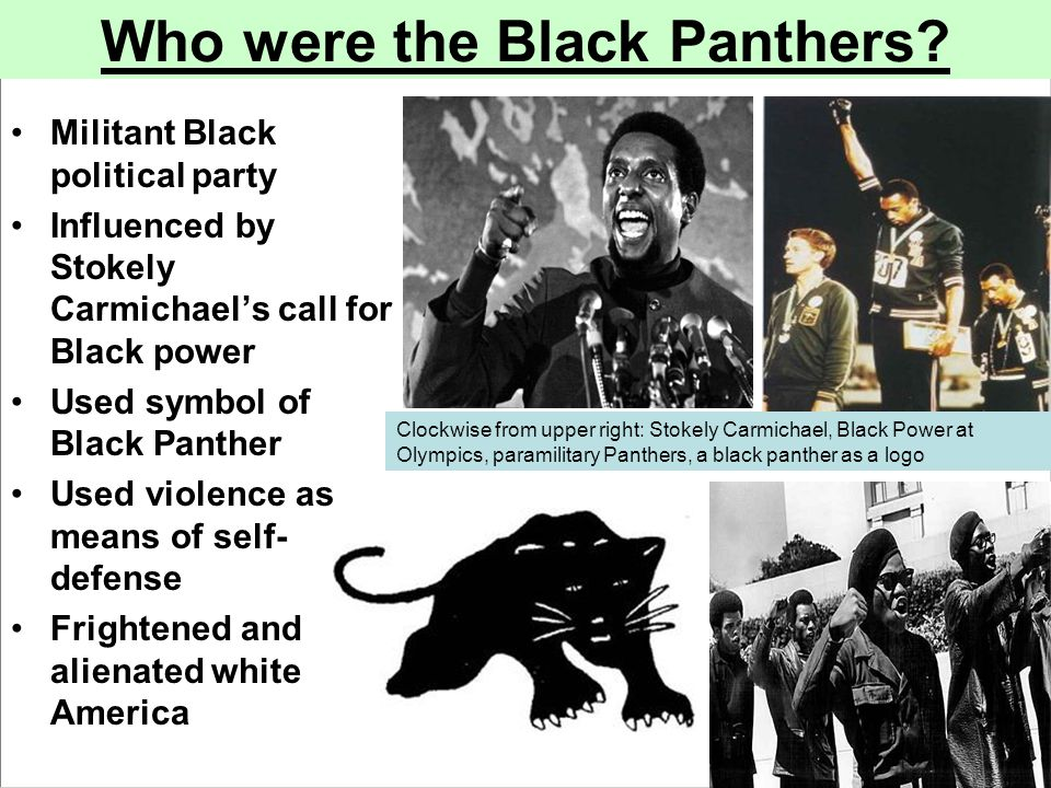 Who were the Black Panthers