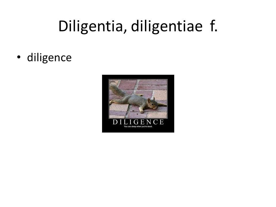 Diligentia, diligentiae f.