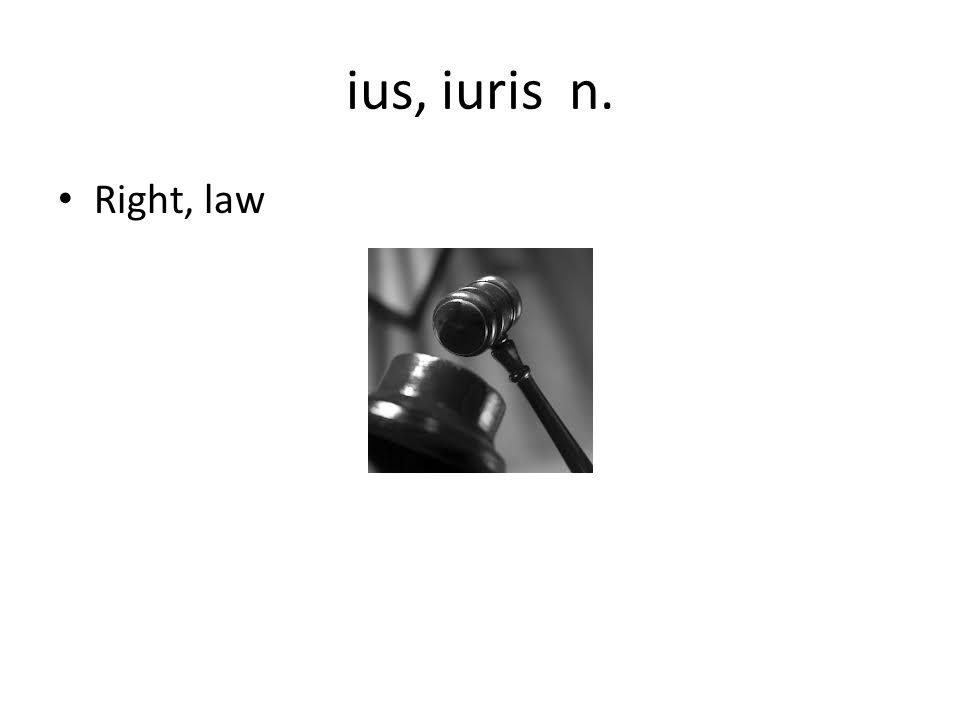 ius, iuris n. Right, law