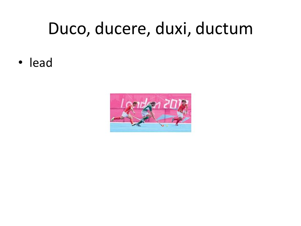 Duco, ducere, duxi, ductum