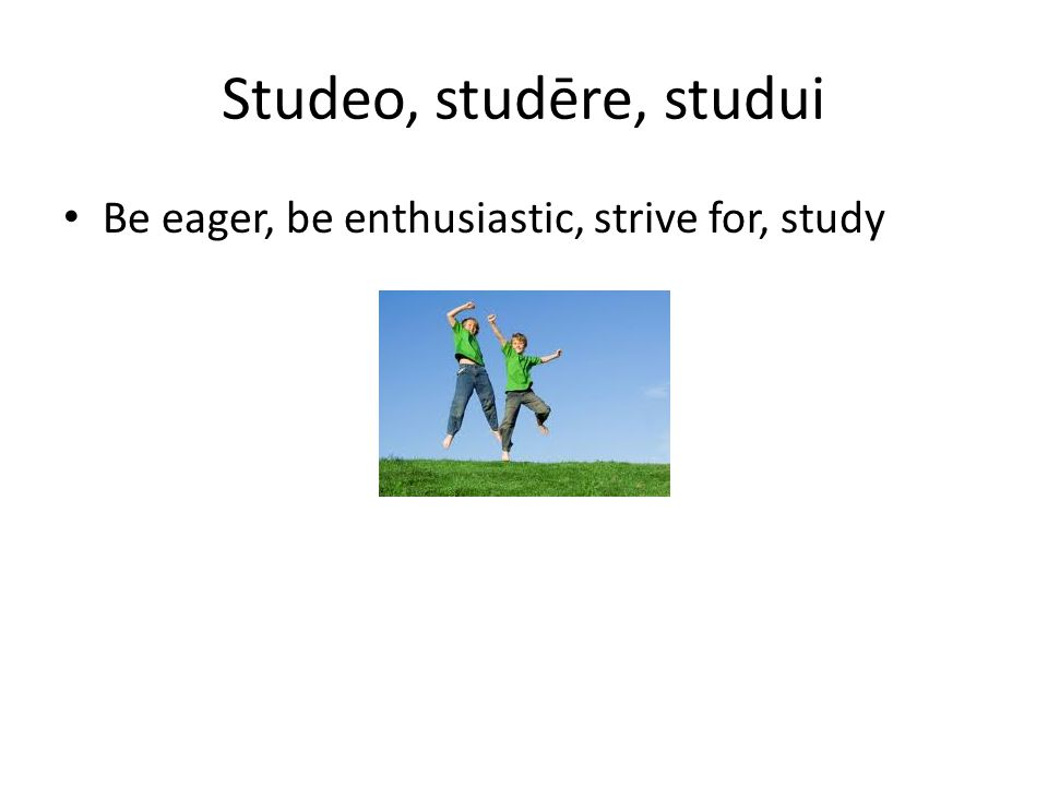 Studeo, studēre, studui Be eager, be enthusiastic, strive for, study