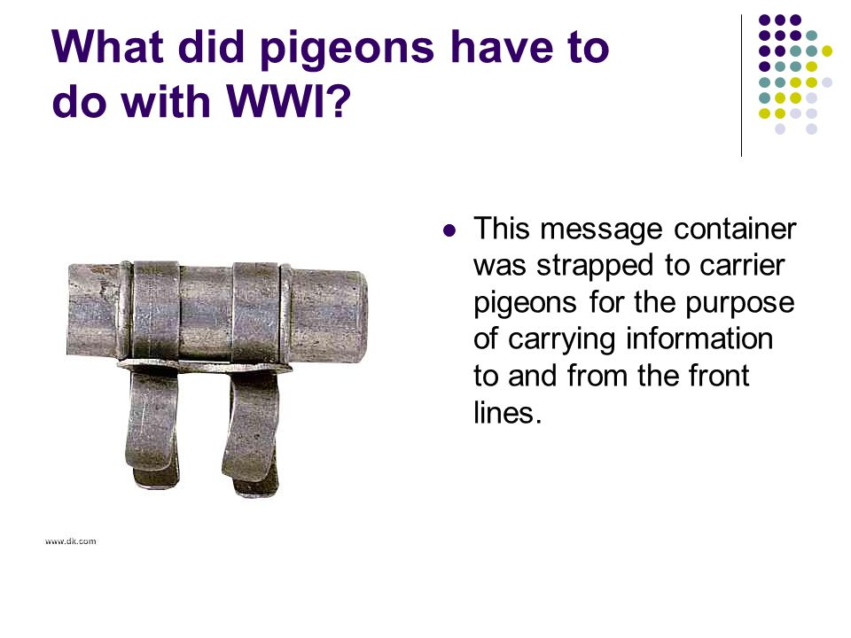What did pigeons have to do with WWI
