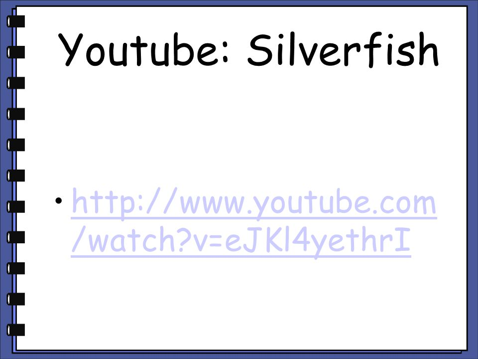 Youtube: Silverfish http://www.youtube.com/watch v=eJKl4yethrI