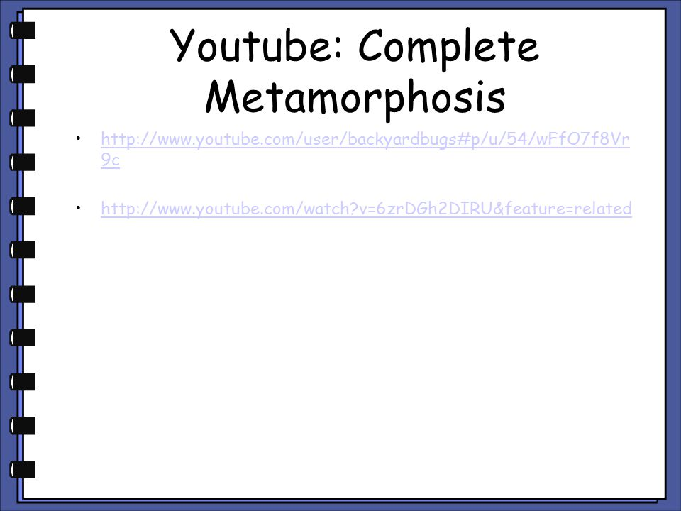Youtube: Complete Metamorphosis