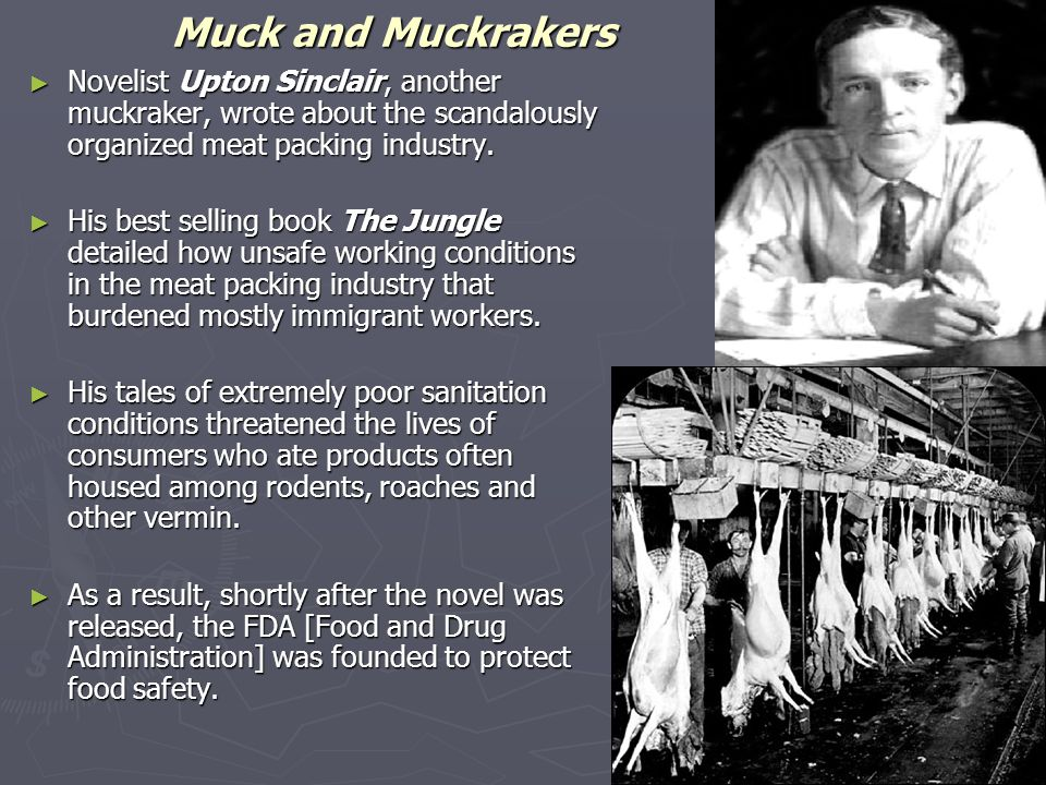 Muck and Muckrakers Novelist Upton Sinclair, another muckraker, wrote about the scandalously organized meat packing industry.