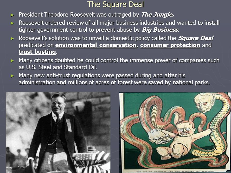The Square Deal President Theodore Roosevelt was outraged by The Jungle.