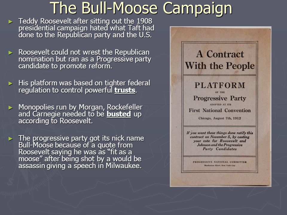The Bull-Moose Campaign