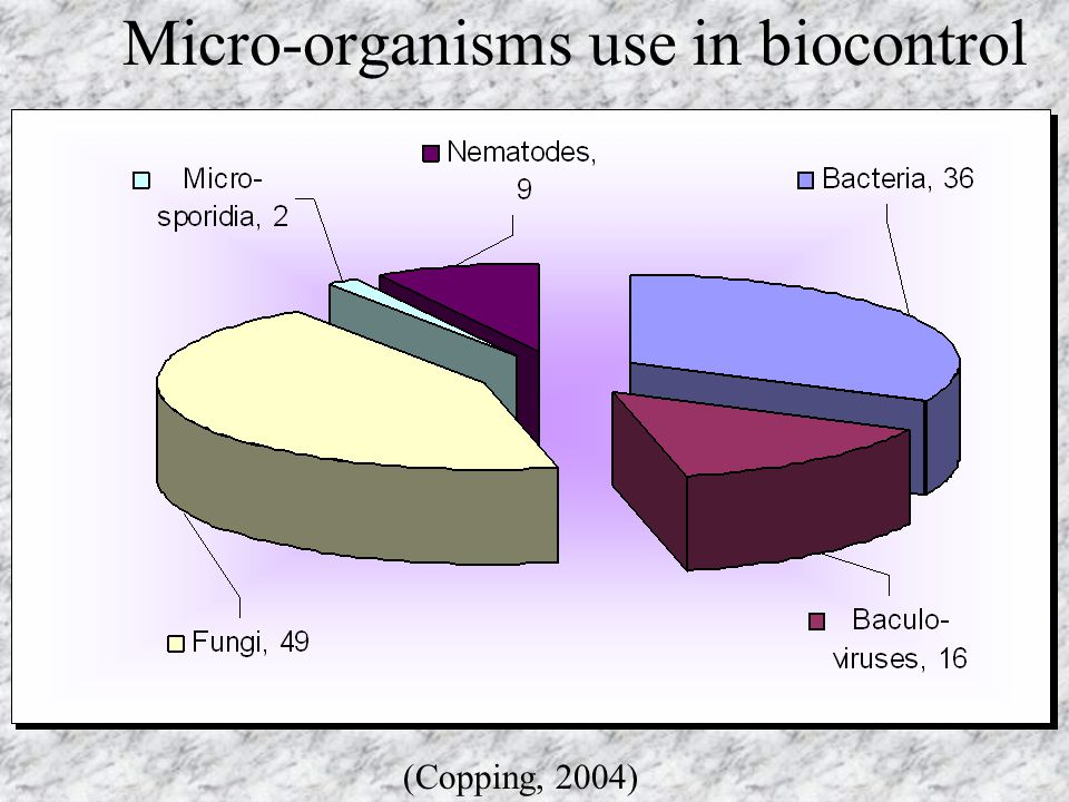 Micro-organisms use in biocontrol