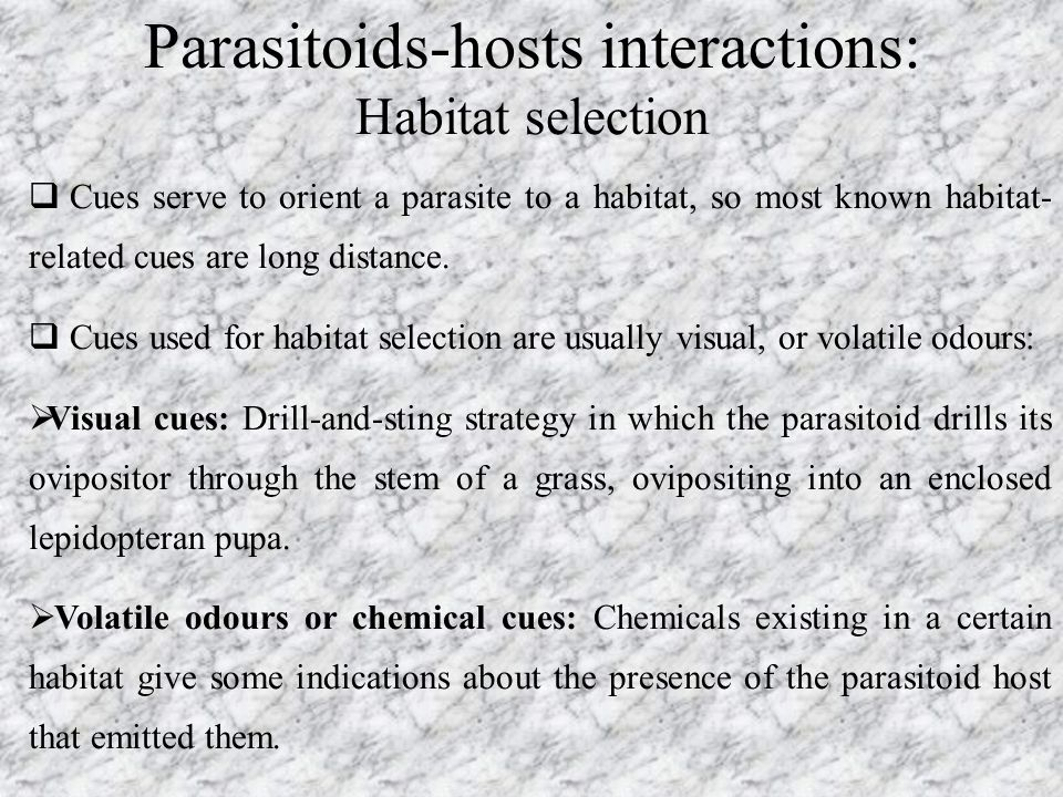 Parasitoids-hosts interactions: Habitat selection