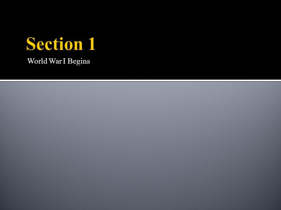 Section 1 World War I Begins