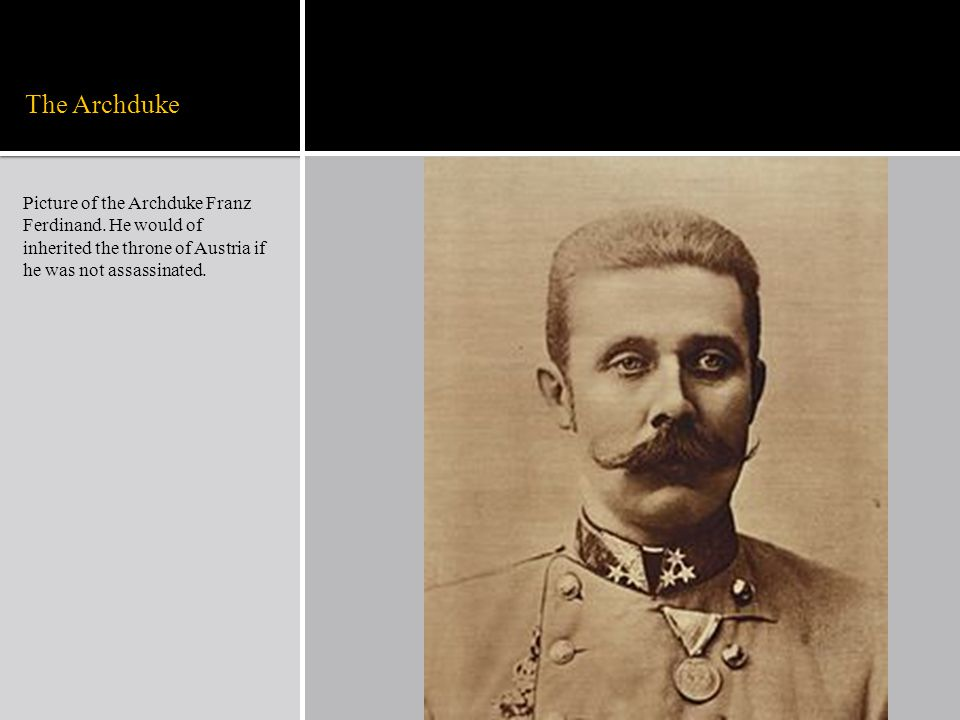 The Archduke Picture of the Archduke Franz Ferdinand.