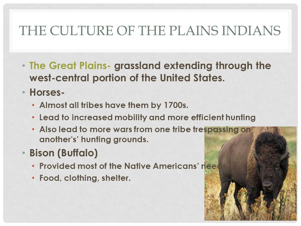The Culture of the plains Indians