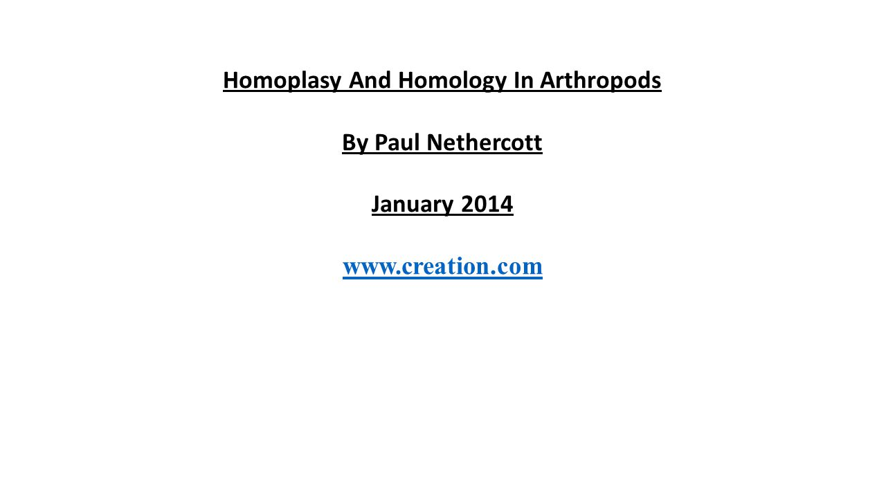 Homoplasy And Homology In Arthropods By Paul Nethercott January 2014