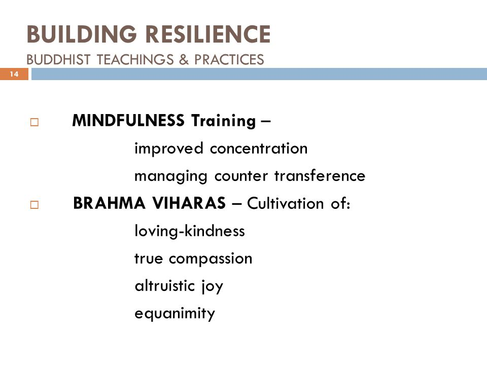 BUILDING RESILIENCE BUDDHIST TEACHINGS & PRACTICES