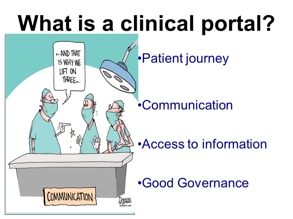 What is a clinical portal