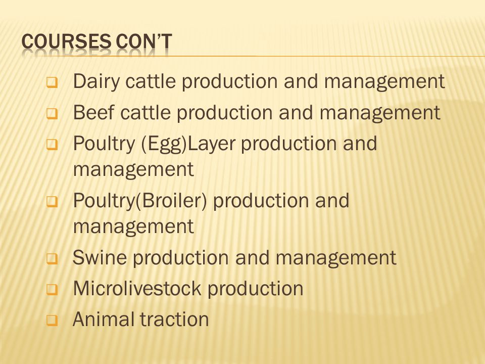 COURSES CON'T Dairy cattle production and management. Beef cattle production and management. Poultry (Egg)Layer production and management.