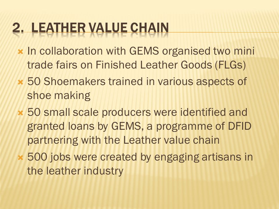 2. Leather Value Chain In collaboration with GEMS organised two mini trade fairs on Finished Leather Goods (FLGs)