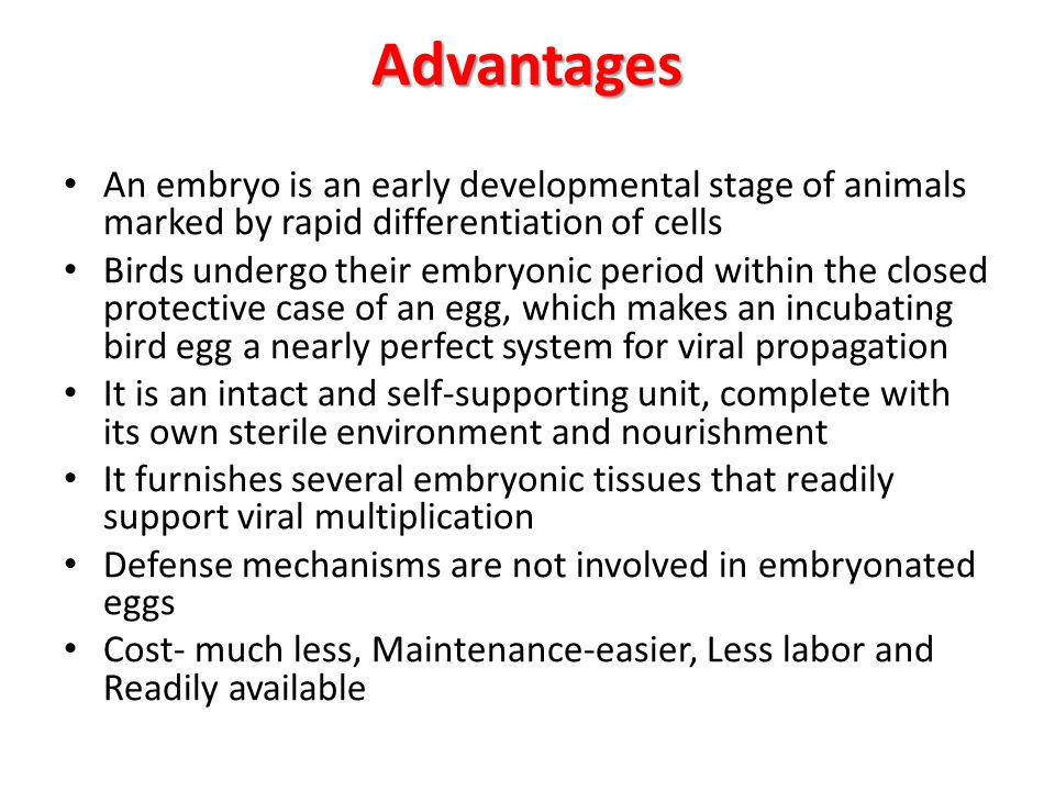 Advantages An embryo is an early developmental stage of animals marked by rapid differentiation of cells.