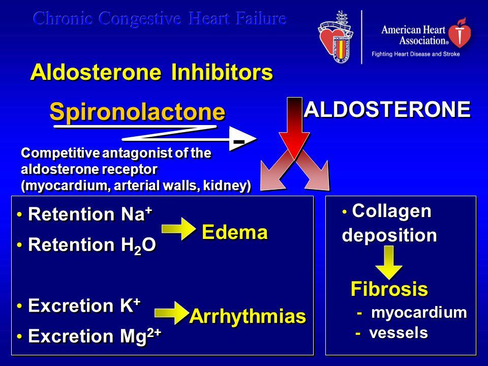 - Spironolactone Aldosterone Inhibitors ALDOSTERONE Edema Fibrosis