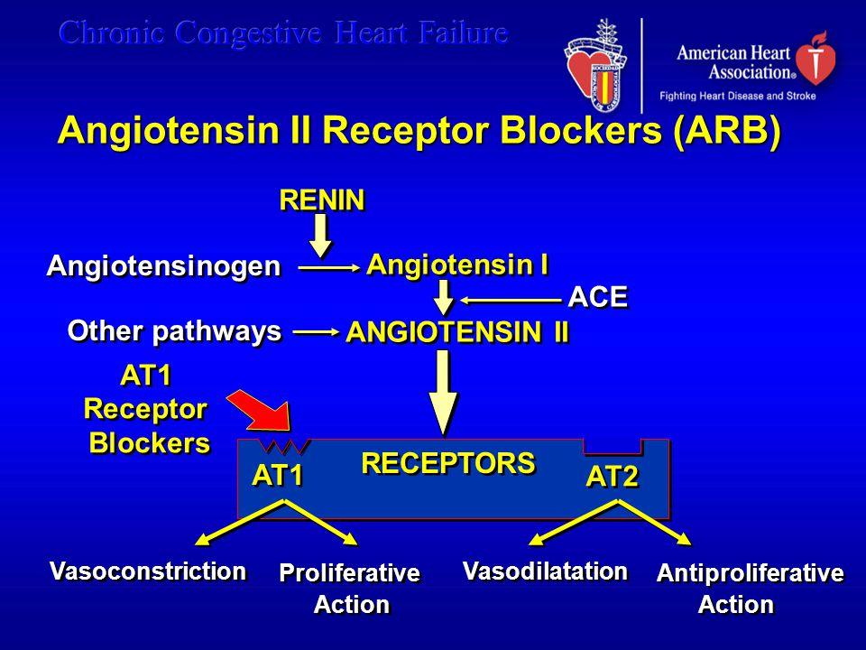 Angiotensin I ANGIOTENSIN II
