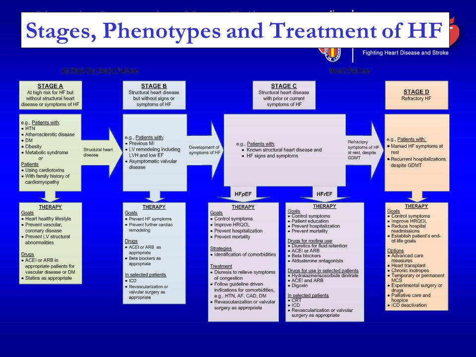 Stages, Phenotypes and Treatment of HF