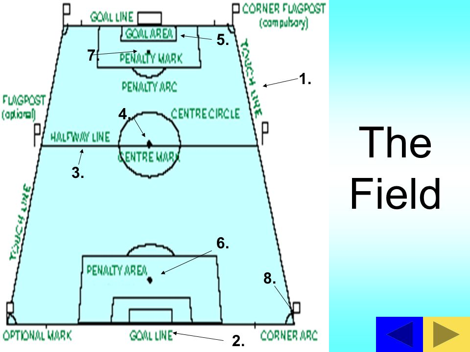 5. 7. 1. 4. The Field 3. 6. 8. 2.