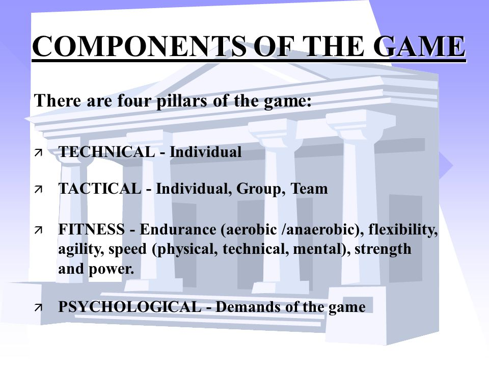 COMPONENTS OF THE GAME There are four pillars of the game:
