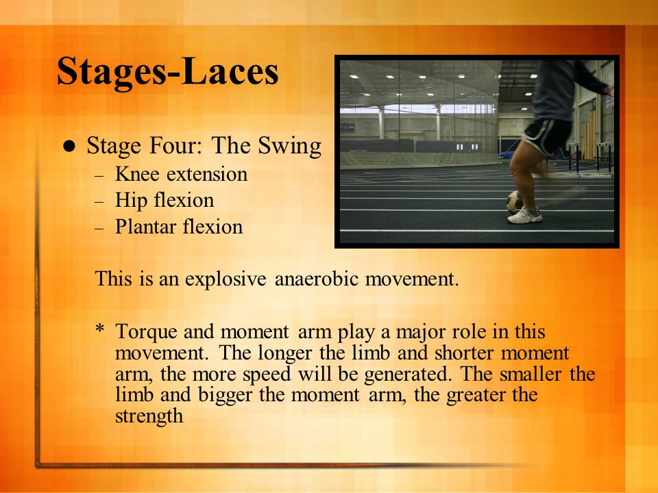 Stages-Laces Stage Four: The Swing Knee extension Hip flexion