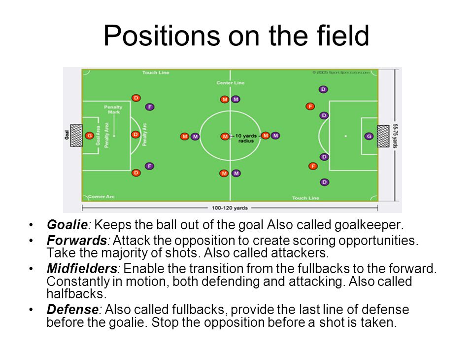 Positions on the field Goalie: Keeps the ball out of the goal Also called goalkeeper.