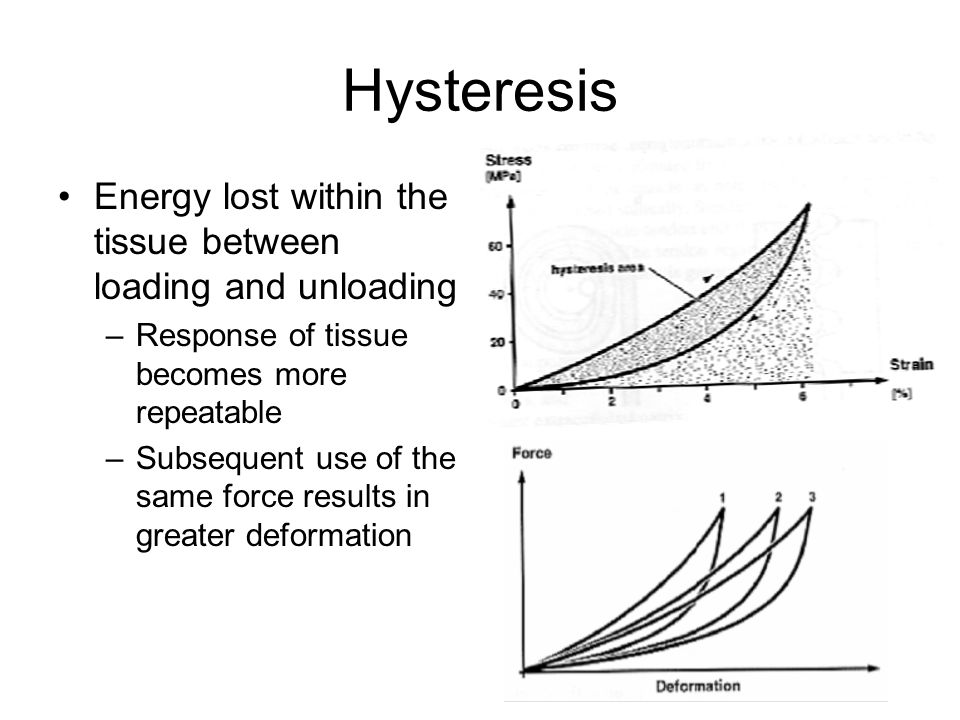 Hysteresis Energy lost within the tissue between loading and unloading