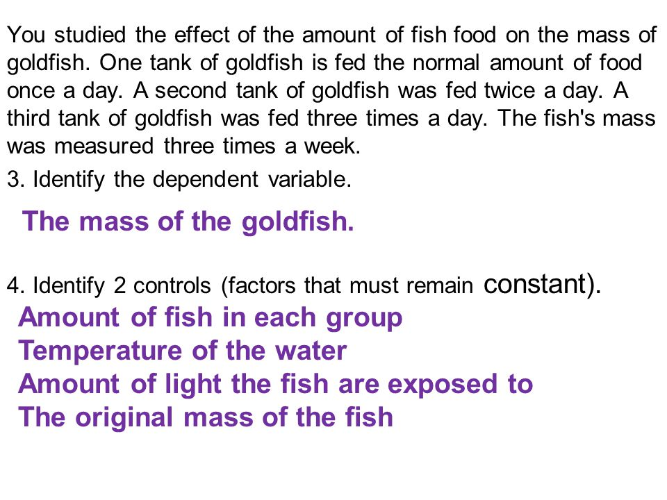 The mass of the goldfish.