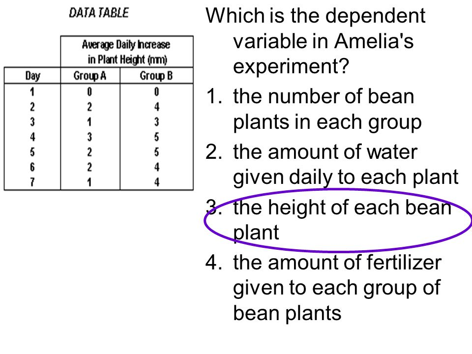 Which is the dependent variable in Amelia s experiment