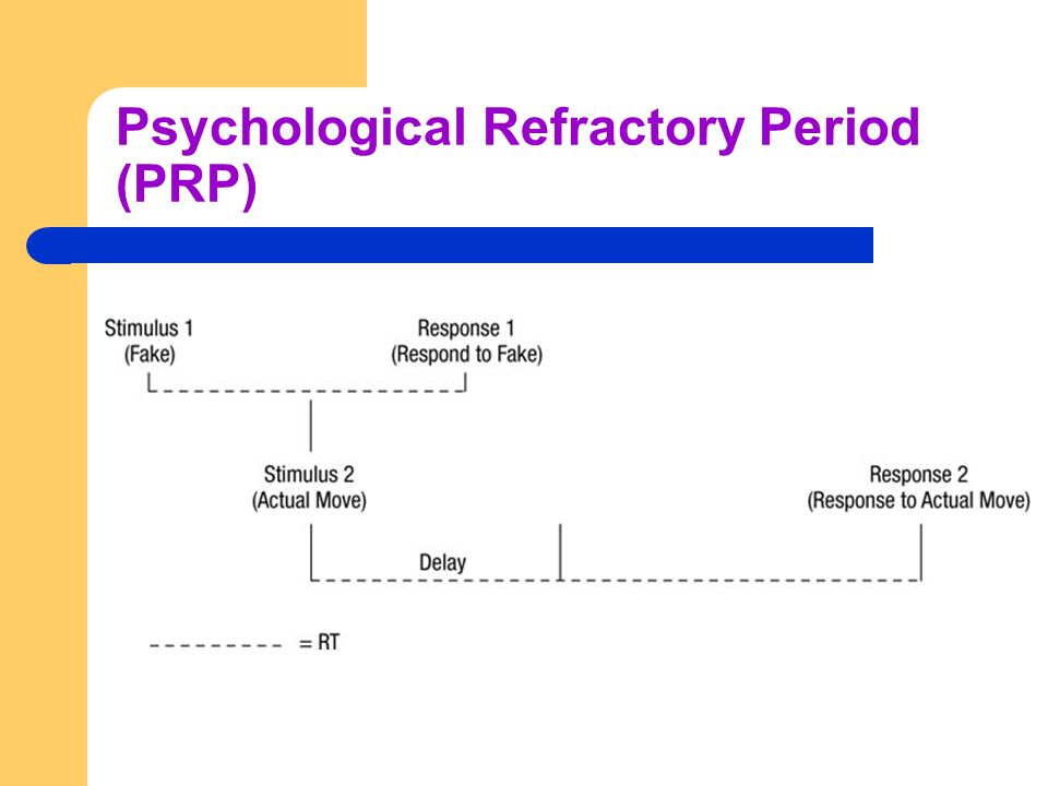 Psychological Refractory Period (PRP)