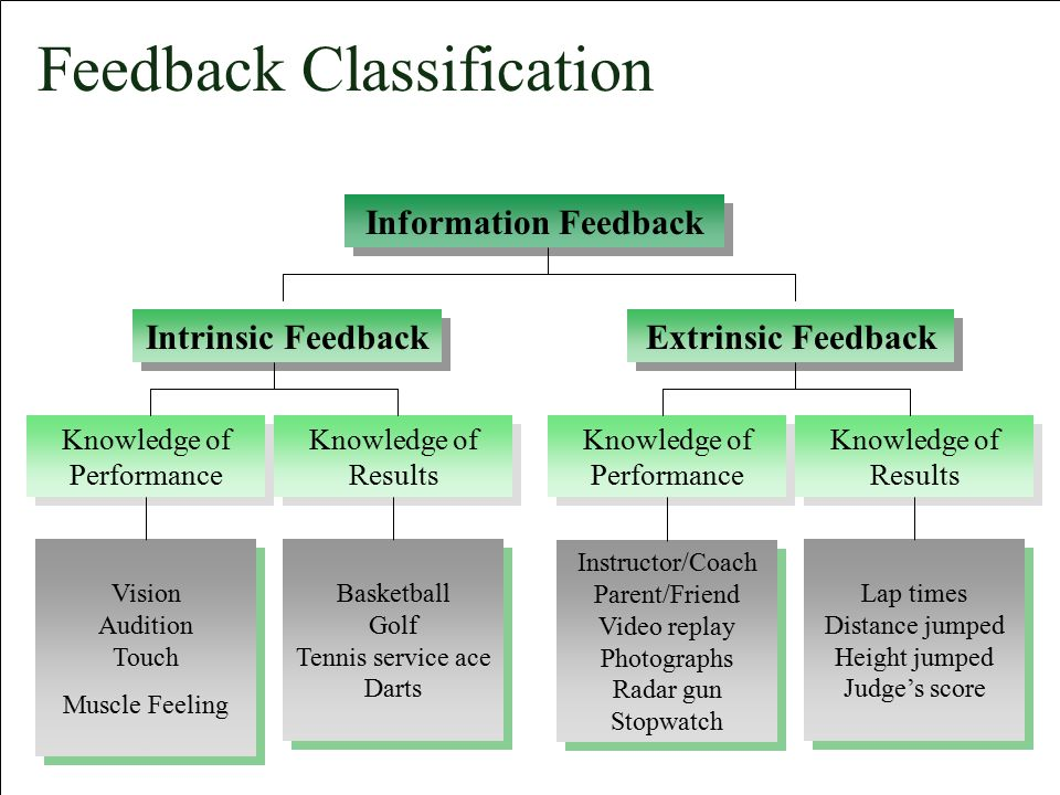 Feedback Classification